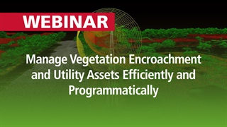 Manage Vegetation Encroachment and Utility Assets Efficiently and Programmatically | Webinar