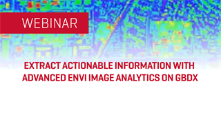 Extract Actionable Information with Advanced ENVI Image Analytics on GBDX